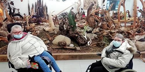 en visite a l'exposition sur les racines