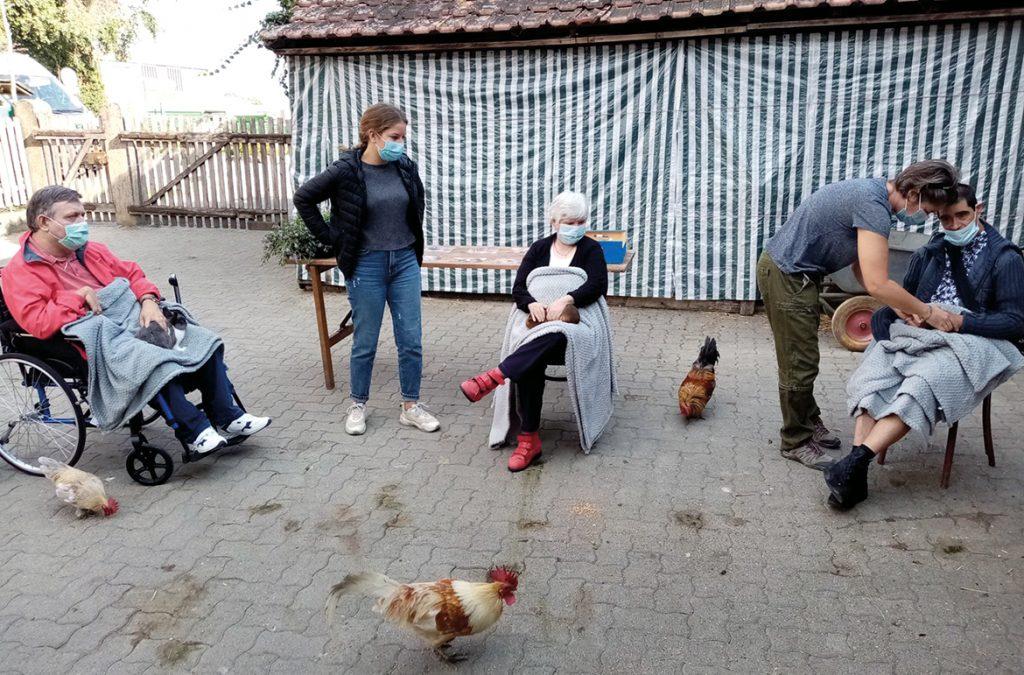 Ferme de Rhinau, les résidents avec des poules
