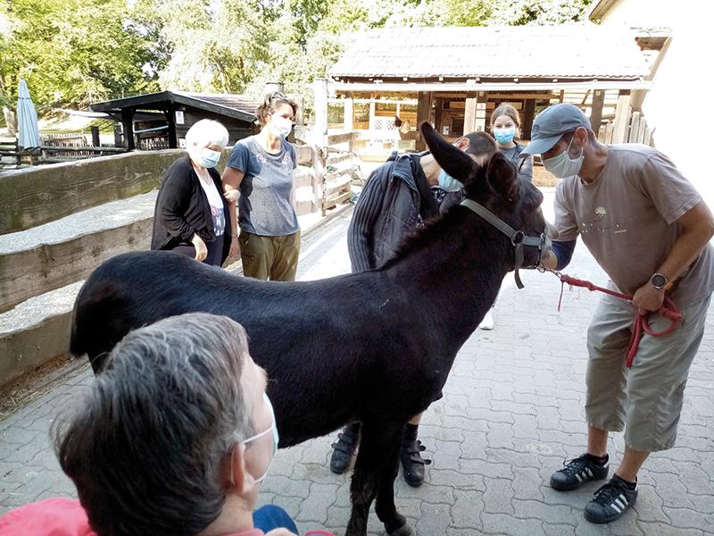 Des résidents avec un cheval